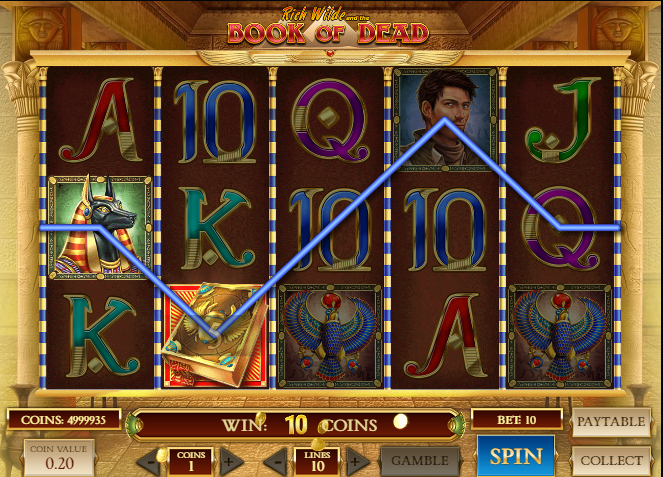 Book of dead slot game -wild symbol