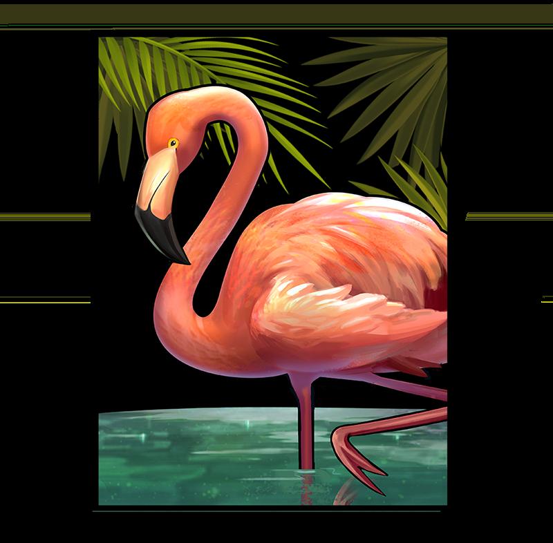 Flamingo Symbol Narcos slot game