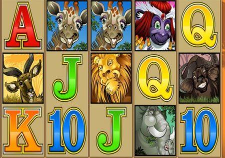 Mega Moolah Slot Game by Microgaming