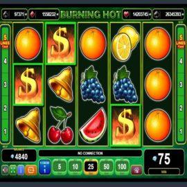 Burning Hot Slot Review