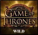 Game of thrones slot wild symbol