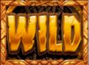 Vikings Go Berzerk Wild Symbol
